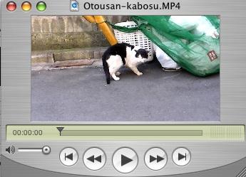 Otosankabosu