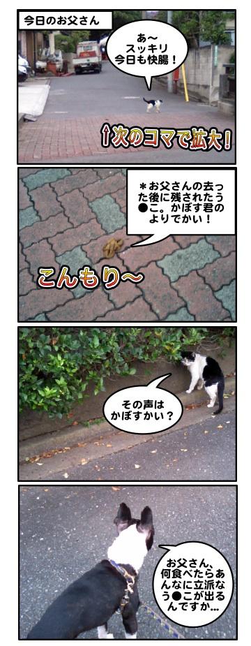 Kabosu0710101