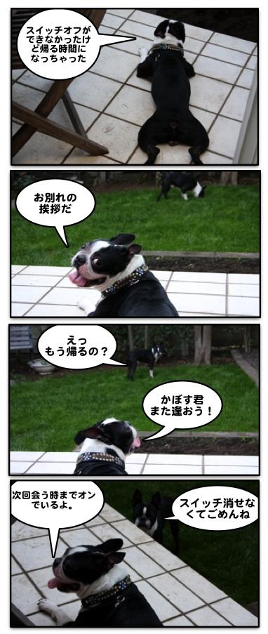 Hachi0711212