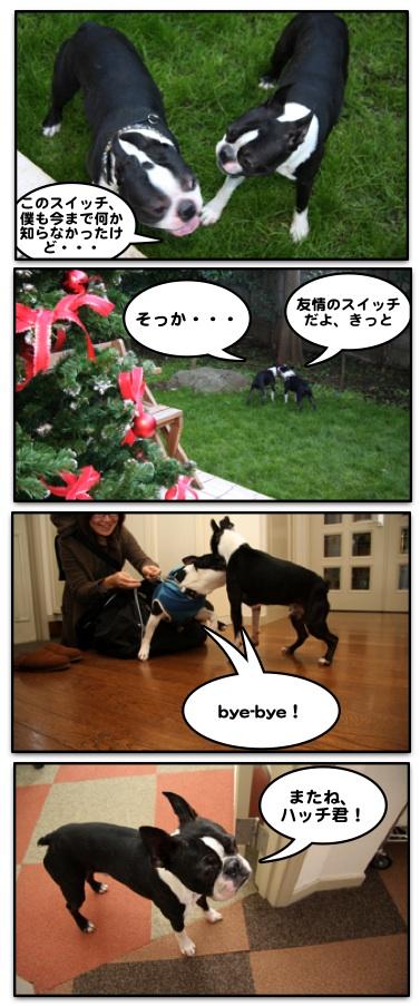 Hachi0711213