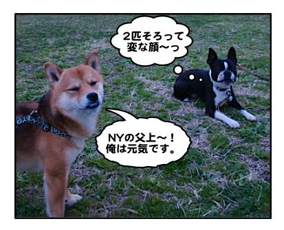 Ryu071227