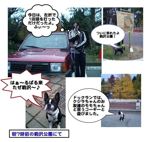Komazawa0811273
