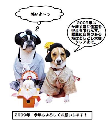 Kabosu090101