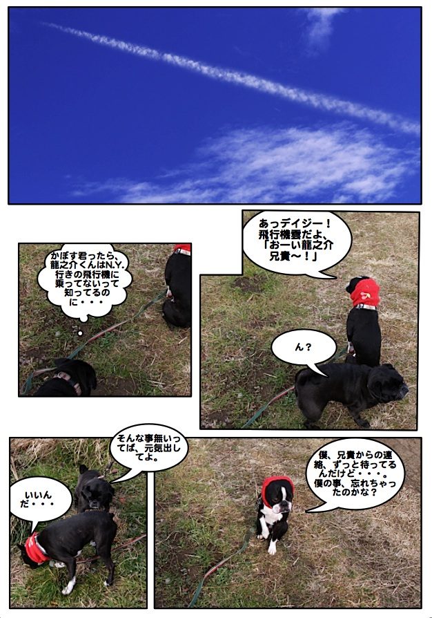 Ryu0904071