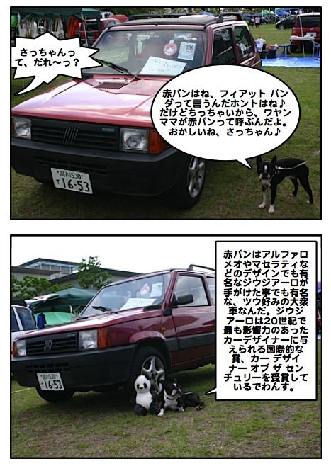 Kabosu0907042